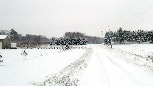 Driving for many years on slick winter roads can develop great reflexes. They may develop to a point where you don't realize you're making corrections to a race car's unwanted movements at the starting line.