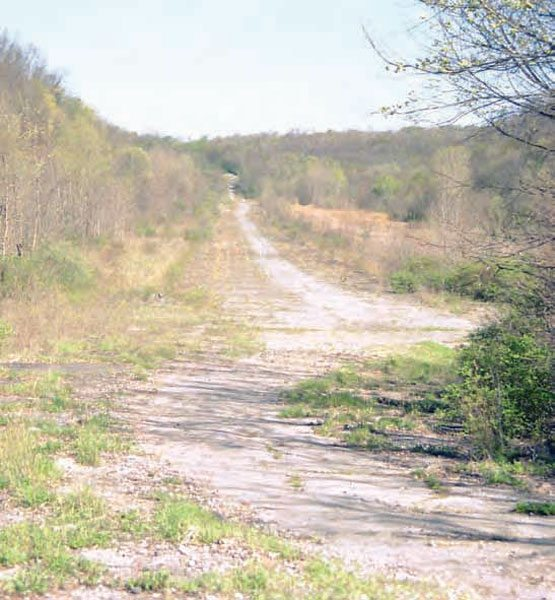 Although weeds and trees have taken over most of the property, the historic strip of pavement is still there and the general lay of the land is the same. (Photo Courtesy Bill Truby)