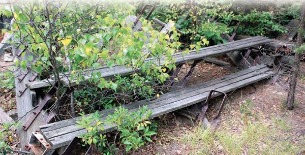 Fast forward to 2010 and those wooden bleachers are still on the PDL property, but they've suffered through another twenty years of harsh weather. The bleachers are obviously not in use for the reunion events, but still rest on the property as an authentic artifact. (Photo Courtesy Stan Zigmont)